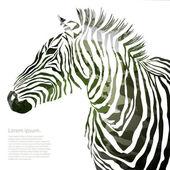 Tierische Illustration Vektor militärische Zebra Kontur. EPS — Stockvektor