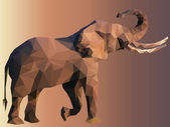 Elephant Portrait Low Poly Vector — Stock Vector