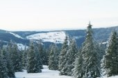 European Mountains - Krkonose — Stock Photo