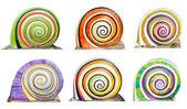 Group of colorful cocnrete gastropod — Stock Photo