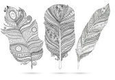 Vector set of doodle feathers on white background. — Stock Vector