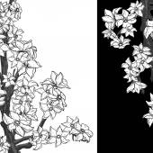 Black and white background with flowering apple tree. — Stockvektor