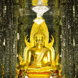 Golden Buddha statue at Cathedral glass, Temple in Uthai Thani , — Stock Photo #55499219