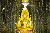 Golden Buddha statue at Cathedral glass, Temple in Uthai Thani , — Foto Stock