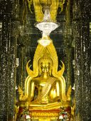 Golden Buddha statue at Cathedral glass, Temple in Uthai Thani , — Стоковое фото