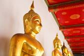 Buddha in Wat Pho Temple sequential nicely in Bangkok, Thailand. — Stock Photo