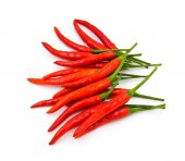 Red hot chili pepper isolated on a white background — Stock Photo