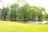 Green city park — Stock Photo