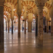 Interior of the Great Mosque in Cordoba — Stock Photo #70950647
