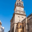 Bell tower in The Great Mosque of Cordoba — Stock Photo #70993721
