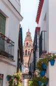 Bell tower of The Great Mosque in spanish Cordoba — Стоковое фото