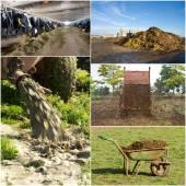 Fertilizing field — Stockfoto