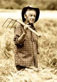 Old peasant in barley field — Stock Photo