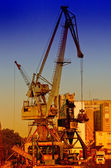 Cranes in harbour — Stock Photo