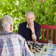 Playing chess — Stock Photo #55958335