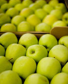 Apples in boxes — Stock Photo