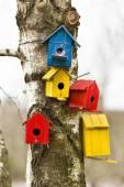 Bird houses — Stock Photo