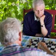 Pensioners playing chess — Stock Photo #70088721