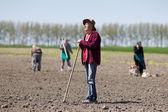 Peasants hoeing on farmland — Stockfoto