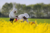 Apiarists in rapeseed field — Stock Photo
