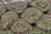 Pile of sod rolls background — Stock Photo