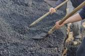 Asphalt workers with a shovel filling wheelbarrow with asphalt 3 — Stock Photo