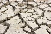 Background of dried and cracked earth 2 — Stock Photo