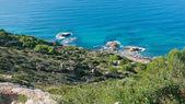 Green coast Majorca — Foto de Stock