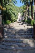 Alfabia gardens — Stockfoto