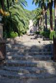 Alfabia gardens — Foto Stock