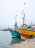 Fishing boats in Tangalle port — Photo