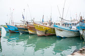 Fishing boats in Tangalle port — Stockfoto