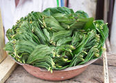 Betel leaves — Stock Photo