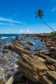 Tropical rocky beach — Stock Photo