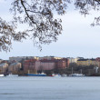Stockholm view — Stock Photo #63463195