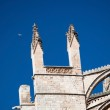 Cathedral towers with a symbolic white bird soaring high on blue sky — Stock Photo #63579227