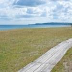 Wooden narrow boardwalk along the coast — Stock Photo #66942787