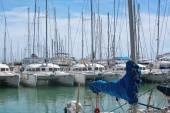 Catamarans and yachts moored in Palma harbor — Stock Photo
