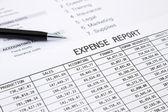 Annual expense report — Stockfoto