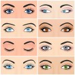 Постер, плакат: Set of female eyes and brows image with beautifully fashion design