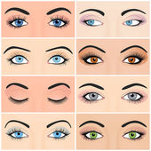 Set of female eyes and brows image with beautifully fashion design — Stock Vector