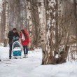 Young family walk in winter wood. Parent pulling sledge — Stock Photo #68166147