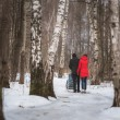 Young family walk in winter wood. Parent pulling sledge — Stock Photo #68881527