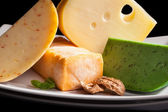 Culinary cheese variation close up. — Stock Photo