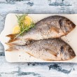 Delicious grilled sea bream fish. — Stock Photo #69059767