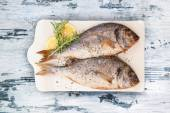 Delicious grilled sea bream fish. — Stock Photo