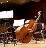 Contrabass on stage in front of an empty hall — Stock Photo