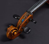 Old Violoncello on a black background. Musical instrument. Stringed musical instrument. cello — Stock Photo