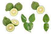 Bergamot kaffir lime leaves herb fresh ingredient isolated set — Stock Photo