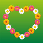 Daisy Aster Marguerite Flowers Heart — Stock Vector